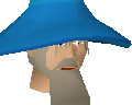 File:Watchtower wizard chathead old.png