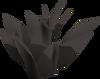 Black herb detail