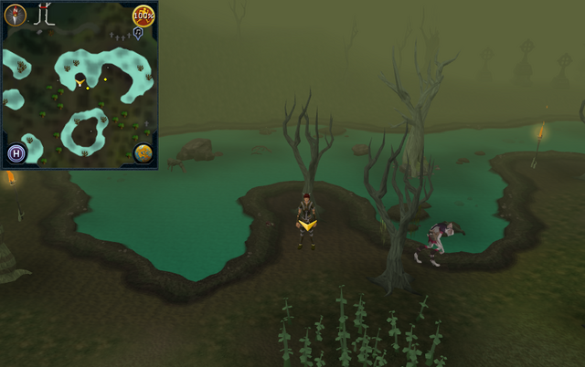 File:Scan clue Haunted Woods south-east of Fenkenstrain's Castle.png