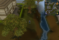 Compass clue Ardougne east of Carnillean Mansion.png
