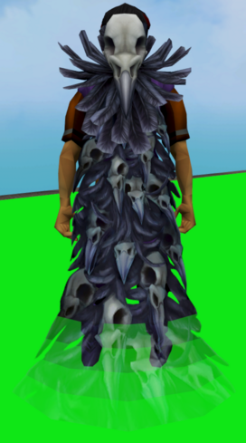 File:Ravensworn cape equipped.png