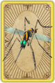 Cloning mosquito card detail.png
