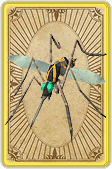 File:Cloning mosquito card detail.png