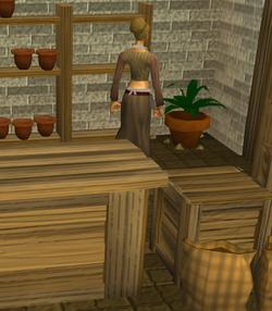 Sarah's Farming Shop interior