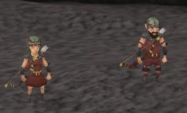 Gnome companions