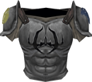 Fighter torso