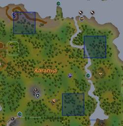 Gecko (orange) locations