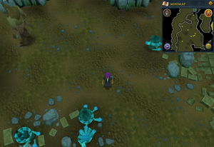Scan clue Brimhaven Dungeon lower level Moss Giants chamber