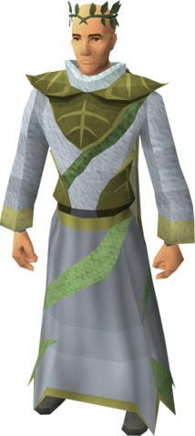 File:Third-age druidic equipped male.png