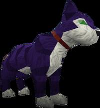 'Fraidy cat