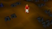 Mining Guild 1