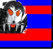Shadow fleet flag