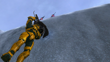 Grif dangling