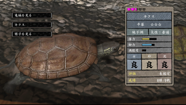 File:Turtle tub - stats.png
