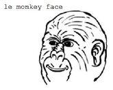 Le monkey face