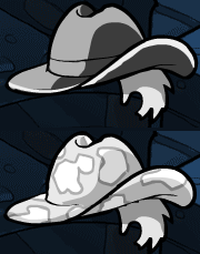 File:Cowgirl Hat.png