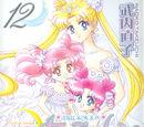 Pretty Guardian Sailor Moon (Volume 12)/Shinsōban
