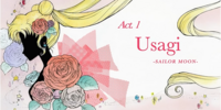 Act 1 - Usagi, Sailor Moon (episode)