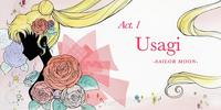 Act 1 - Usagi, Sailor Moon (episode)