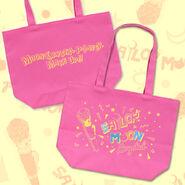 Sailormoon-crystal-totebag-disguise-pen2014