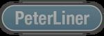 Peterliner - Saints Row IV logo