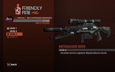McManus 2015 - Level 3 description