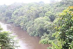 File:250px-Fluss Dja Somalomo.JPG