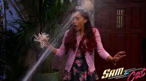 File:Cat getting sprayed on by water.PNG