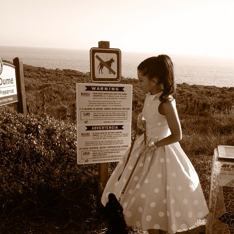 File:Ariana with a dog at a beach prohibiting dogs.png