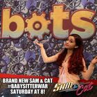 Cat in the Bots Restaurant
