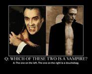 Motiv - real-vampire