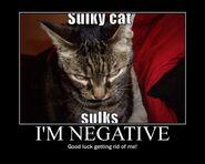 Motiv - negativity