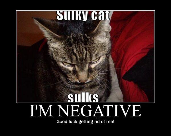 File:Motiv - negativity.jpg