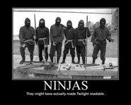 Motiv - ninjas twilight