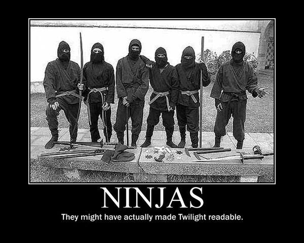 File:Motiv - ninjas twilight.jpg