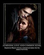Motiv - smeyer feminism love common sense