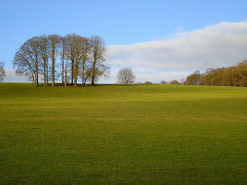 File:Walking the Chiltern Hills by Pishill, Oxfordshire.jpg