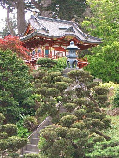 SF Japanese garden11