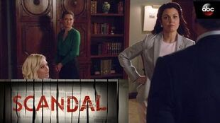Liz North's Meets A Tragic End - Scandal 6x11