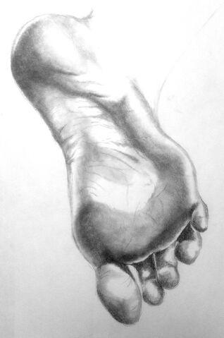 Datei:Fuß.jpg