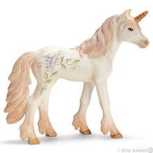 Unicorn Foal
