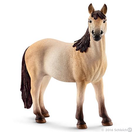 File:Mustang Mare.jpg