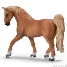 Tennesse Walker Stallion