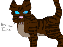 Hawkfrost for Icicle