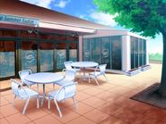 Radish Open Cafe