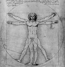 File:Human anatomy.png