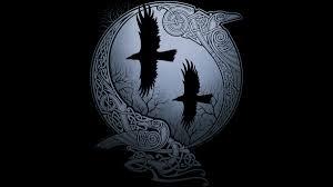 Ravens-Odin-goog.jpg