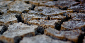 Dried Lava on the Edge Of Hoovoqueere-7291