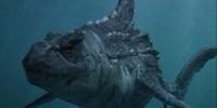 Dinoshark (Character)