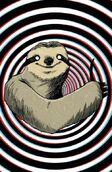 Amazing Sloth